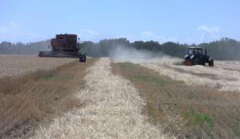 На Изюмщине продолжается уборка полей