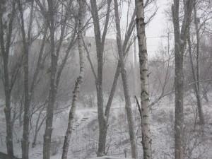Погода 20 марта в городе Изюме преподнесла Сюрприз-8