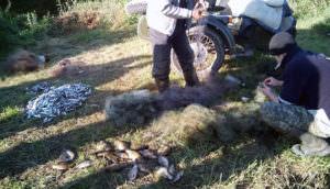 Своими действиями граждане нанесли государству ущерб на сумму более 200 000 гривен-1