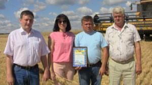 В районе собрано первую тысячу тонн зерна-3