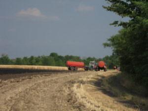 спасатели ликвидировали пожар на пшеничном поле-2