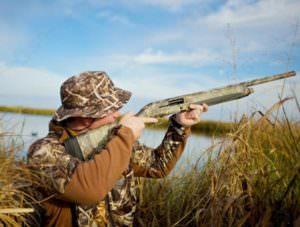 Об ограничении осуществления охоты в охотничий сезон 2016-2017 годов