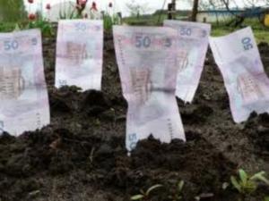 Сельхозпредприятиями района начаты расчеты за аренду земельных паев