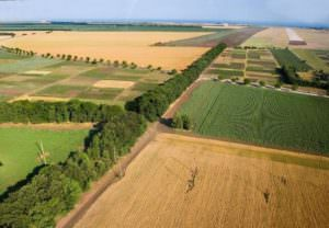 Фермеры по требованию прокуратуры вернули государству из незаконной аренды более 180 га земель