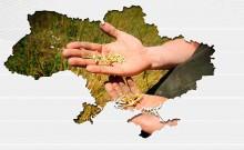 1991-2016 как за четверть века изменился агросектор Украины
