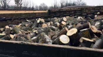 В Изюме полицейские задержали автомобиль, которым незаконно перевозили древесину