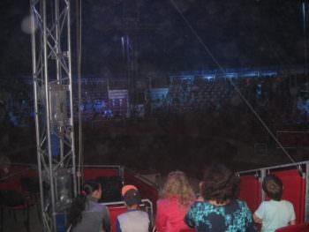 Выступление цирка Италии Кобзов в городе Изюме 26 мая 2017 года-8