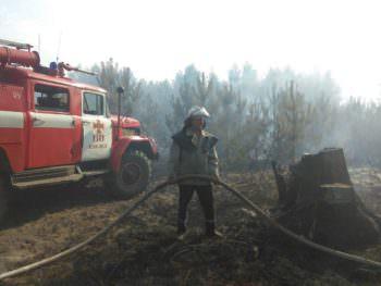 Ликвидирован пожар на территории Петровского лесничества Изюмского района