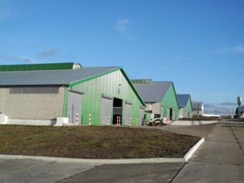 В Чугуевском районе реализуют крупный инвестпроект в сфере животноводства