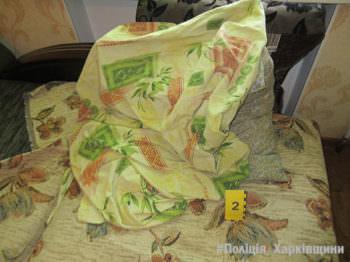 10-ти летняя девочка пришла в дом пощедровать, а ее изнасиловали (Балаклейский район)
