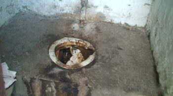 На территории Изюмской ЦГБ снесут уличный туалет