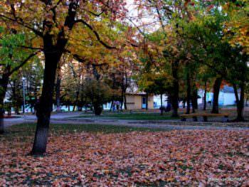 Осень в городе Изюме 2018 (фото)