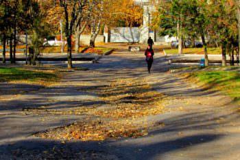 Центральный парк города Изюм (фото)