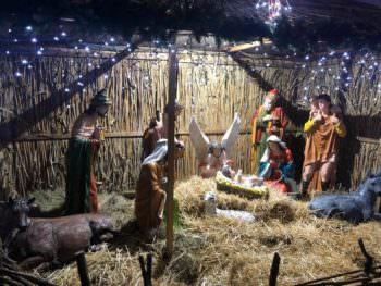В центре Изюма установили Рождественский вертеп