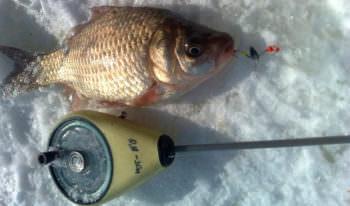 Зимняя рыбалка – секреты успешной ловли рыб