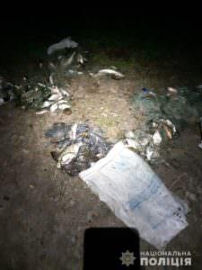 Жители Боровского района незаконно ловили рыбу сетками