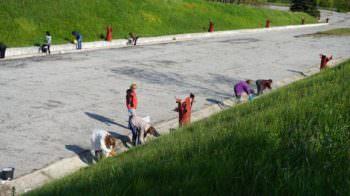 В Изюме благоустроили территории к празднику Победы 9 мая
