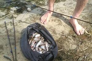 """За вылов рыбы тремя """"экранами"""" мужчина заплатит штраф более 12 тыс. грн."""