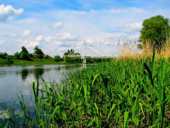 природа, река, северский донец, мост