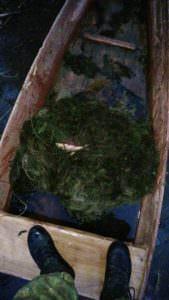 Высокие штрафы не останавливают рыбаков ловить рыбу лесковой сеткой