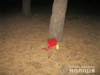 В Изюмев автомобиле изнасиловали женщину, а потом выбросили ее до лесополосы