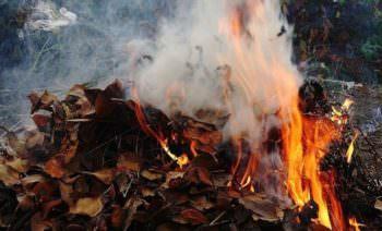 В Изюме массово палят сухие листья - дышать нечем
