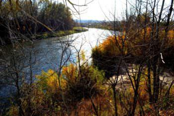 По реке Сиверский Донец плыл труп женщины
