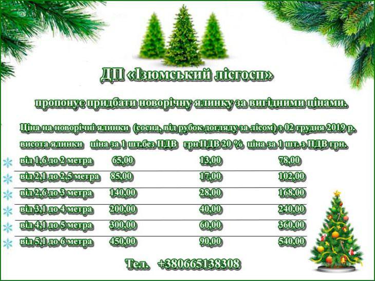 Сколько стоит живая елка в Изюме