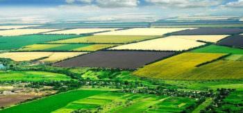 В Изюмском районе на аукцион выставлено землю сельхозназначения