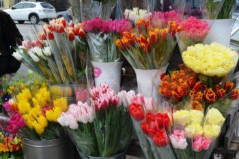 Сколько стоят цветы в Изюме