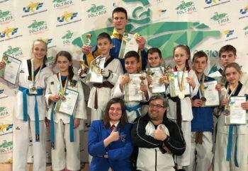 Состоялся открытый чемпионат Полтавской области по тхэквондо