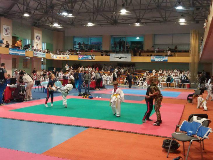 В чемпионате Запорожской области по тхэквондо изюмчанка выиграла золото