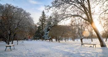 В Изюм идут снег и морозы