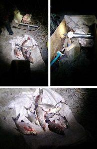 На Оскольском водохранилище мужчина  ловил рыбу двумя лесковыми сетками